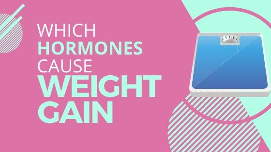 Which Hormones Cause Weight Gain